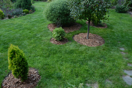 landscaped flowerbeds in a yard