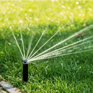 sprinkler head watering a lawn
